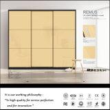 Moderne Entwurfs-Schiebetür-Garderoben (ZHUV)
