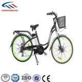 bici elettrica piegata senza spazzola posteriore 250W