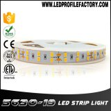 Tira de LED de 24 voltios, iluminación LED de 24V de la tira de cinta, Tira de leds de 6 voltios