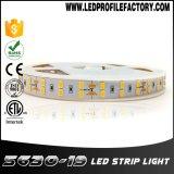 24 Streifen-Beleuchtung des Volt-LED, 24V LED Band, Streifen-Licht 6 Volt-LED