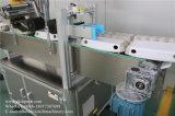 Fábrica da bandeja e da caixa do ovo que etiqueta diretamente a máquina