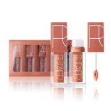 Reeks van de Lippenstift van de Steen van de Lipgloss van de make-up de Waterdichte Langdurige Vloeibare