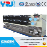 기계를 재생하는 기계를 만드는 테이프를 견장을 다는 PP는 플라스틱 생산 라인을 낭비한다