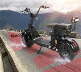 1500W 2つのセットのリチウム電池が付いている電気ココヤシのスクーター