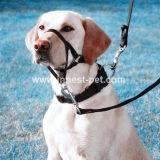 كلب تدريب منتوج كلب رباط ومضادّة قطعة فوهة
