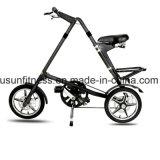 자전거가 자유형 자전거에 의하여 접히고 있다