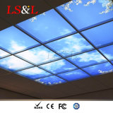 600X600 luz de los paneles de la UL Secne LED para la decoración de la oficina