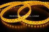 Striscia flessibile di alta luminosità LED con approvazione del Ce per colore giallo (multicolore)