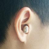 Audición - producto recargable usado deteriorado de la prótesis de oído de Ite