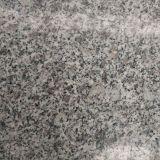 Onze Eigen Treden van het Graniet van de Kleur van de Steengroeve Grijze G623