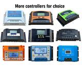 세륨 RoHS 파란 MPPT 태양 전지판 전원 시스템 12V 24V 48V는 평가했다 전압 60A MPPT LCD 디스플레이 (SMP-60)를 가진 태양 책임 관제사를