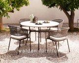 의자를 식사하는 Walden 새로운 옥외 식사 가구 /Garden 및 테이블/세트를 식사하는 호텔