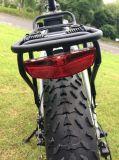 20inh Foldable 뚱뚱한 타이어 전기 자전거
