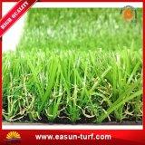 高品質のアクアリウムの柔らかい擬似景色の草