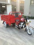 Tres ruedas motocicleta triciclo de carga con la CEE