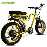 女性のための二重シートの雪のEbikeの脂肪質のタイヤの電気バイク