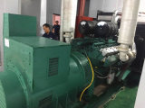 Generatore diesel di Ricardo/generatore Emergency 30kw 50Hz con Ce/ISO
