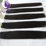 Menschen-Jungfrau Remy Haar-Webart der gute Qualitätsseidige gerade 100%