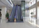Escalator d'intérieur