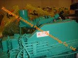 Двигатель дизеля комплекта генератора Dongfeng Cummins (6CTA8.3-G)