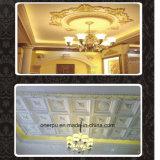 Le plafond de polyuréthane de rosette de plafond d'unité centrale couvre de tuiles la décoration Hn-B029