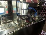 Máquina de empacotamento da bolha para a tabuleta e a cápsula Dpb140 modelo
