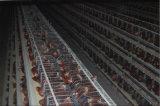 Оцинкованный цыпленок разведения ферма каркаса слоя аккумуляторной батареи с автоматической подачи