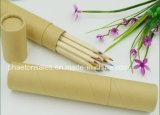 Lápices de madera largos del color en el rectángulo de papel de Kraft