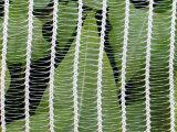 Reticolato dell'uccello di sicurezza di plastica della maglia di agricoltura della rete della protezione della grandine del coperchio del raggruppamento anti