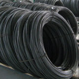 5.5mm Wire Rod Q195、熱転送されたSteel Wire Rod