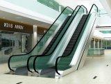 Escalators commerciaux sûrs et confortables