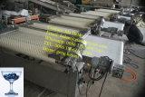 Automatische Blaubeere-sortierende Maschinen-Kirschordnende Zeile