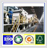 Panneau en ivoire Fbb de C1s dans la qualité