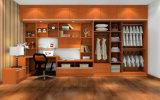 De stevige Houten Garderobe van de Schuifdeur/van de Deur van de Schommeling (zy-020)