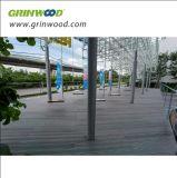 高密度木製のプラスチック合成物WPCの屋外の空のDecking