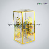 Boîte en plastique transparent Plastic Rectangle Fold PVC Box for Electronic