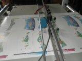 Roulis de film plastique de Rtml-600b/1200b OPP/PE pour couvrir la machine de découpage en travers
