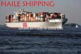 FCL Sea Shipping de Shenzhen à Tokyo