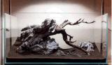Aquarium-Dekoration entsteint Aquarium Rockes