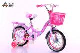 Facory 아이들 자전거 또는 자전거 아기 주기 또는 자전거 아이 자전거 Xd