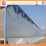 Venlo Typ Sun-Vorstand-Gewächshaus für das Pflanzen