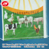 마초, 고양이 배설용상자 PP 자루를 위한 동물 먹이 포장 부대