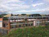 UK (ZY112)에 있는 강철 구조물 전시실