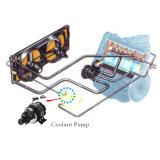 Heavy Duty 12V 24V DC unidad magnética bomba de agua de circulación con el motor sin escobillas para el autobús eléctrico
