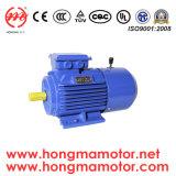 Motor de inducción trifásico de freno de CC