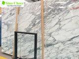 Telha de mármore da laje de Arabescato da laje branca Polished para a decoração