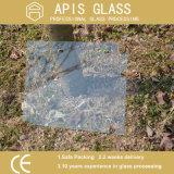 """3/8 """" Frameless緩和されたガラスの/Showerの明確なドアをセリウムおよびSGCCとガラスひく2つの穴および2つのヒンジのノッチ"""