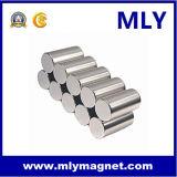 실린더 네오디뮴 영원한 모터 자석 (MLY025)