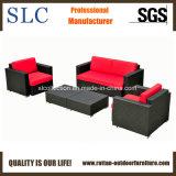 Софа ротанга мебели сада ротанга (SC-B7016)