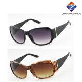 Óculos de moda e Top New de boa qualidade Lady Sunglasses